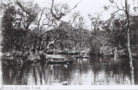 photo: boating on cockle creek c1907